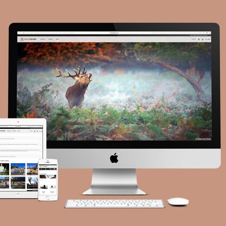 Horizon Website